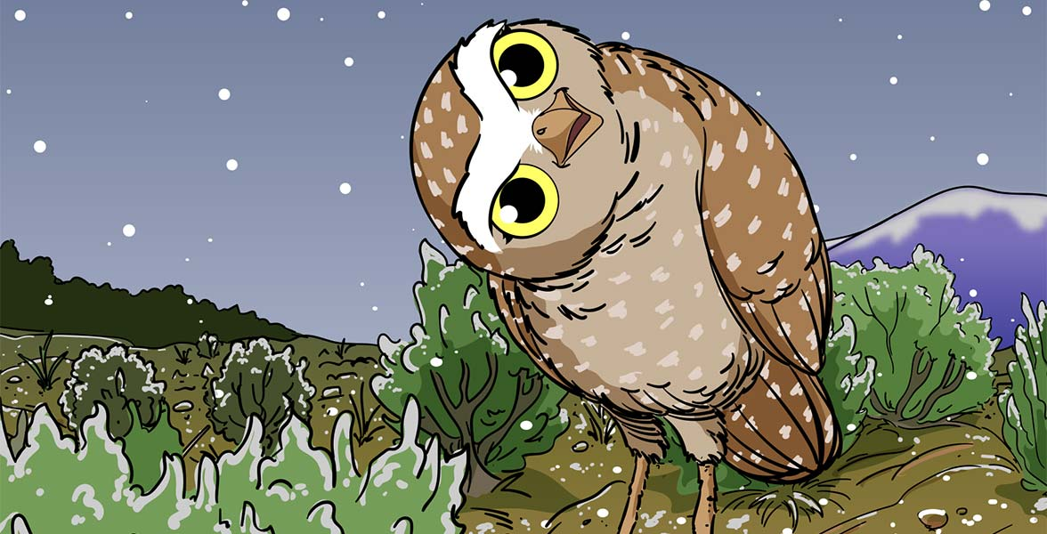 An illustration of a Burrowing Owl in sagebrush steppe with snow falling.