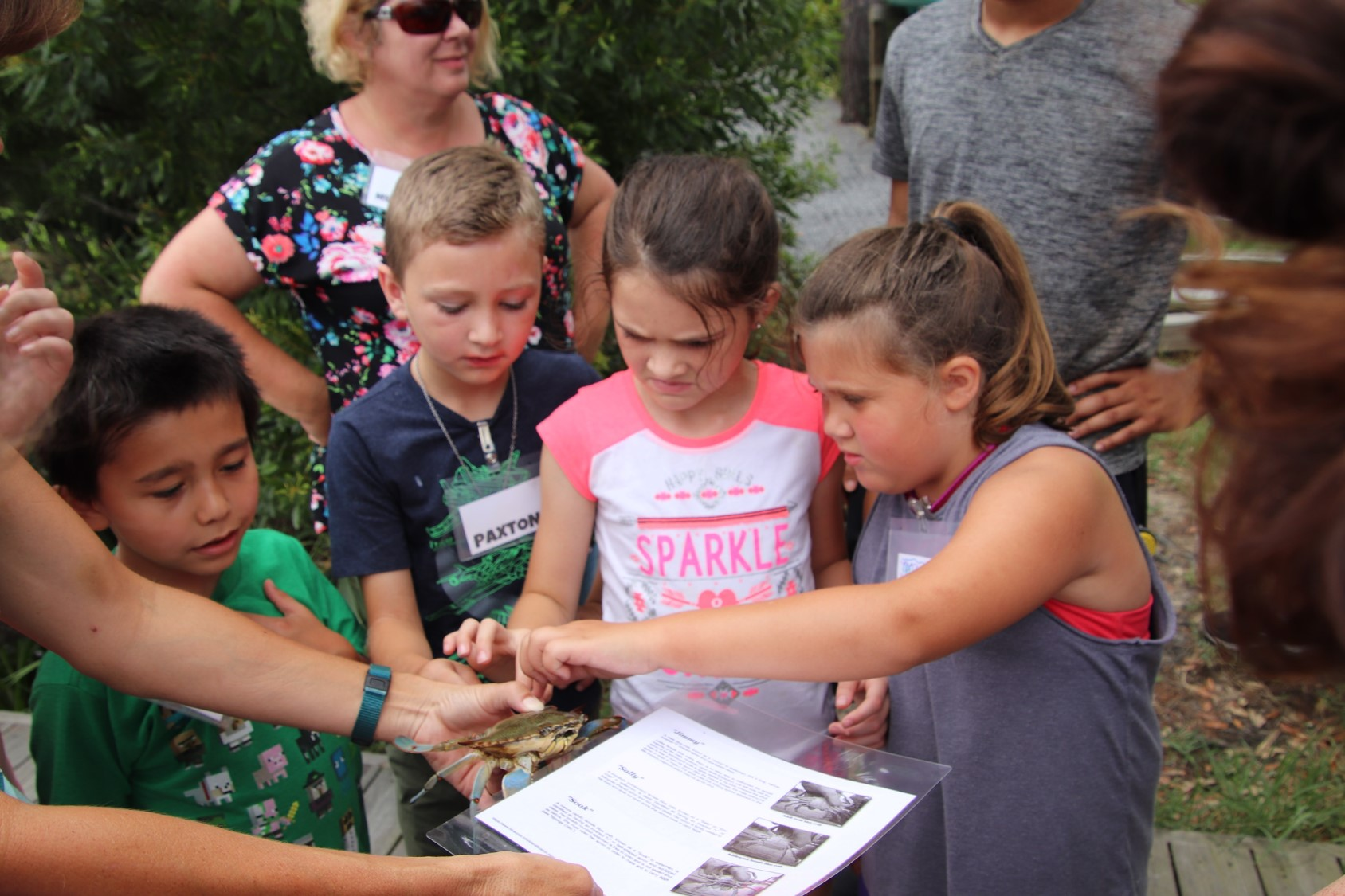 """Campers examine a crab that was collected during a """"critter capture"""" activity."""