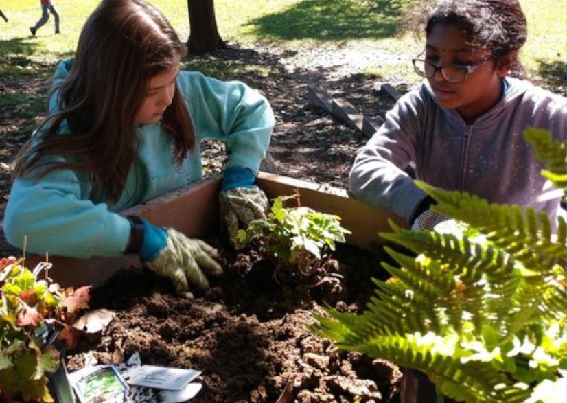 Schoolyard Habitat Program