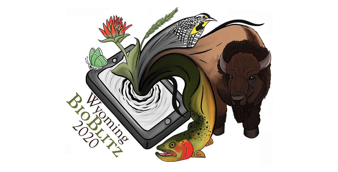 Wyoming BioBlitz 2020 logo.