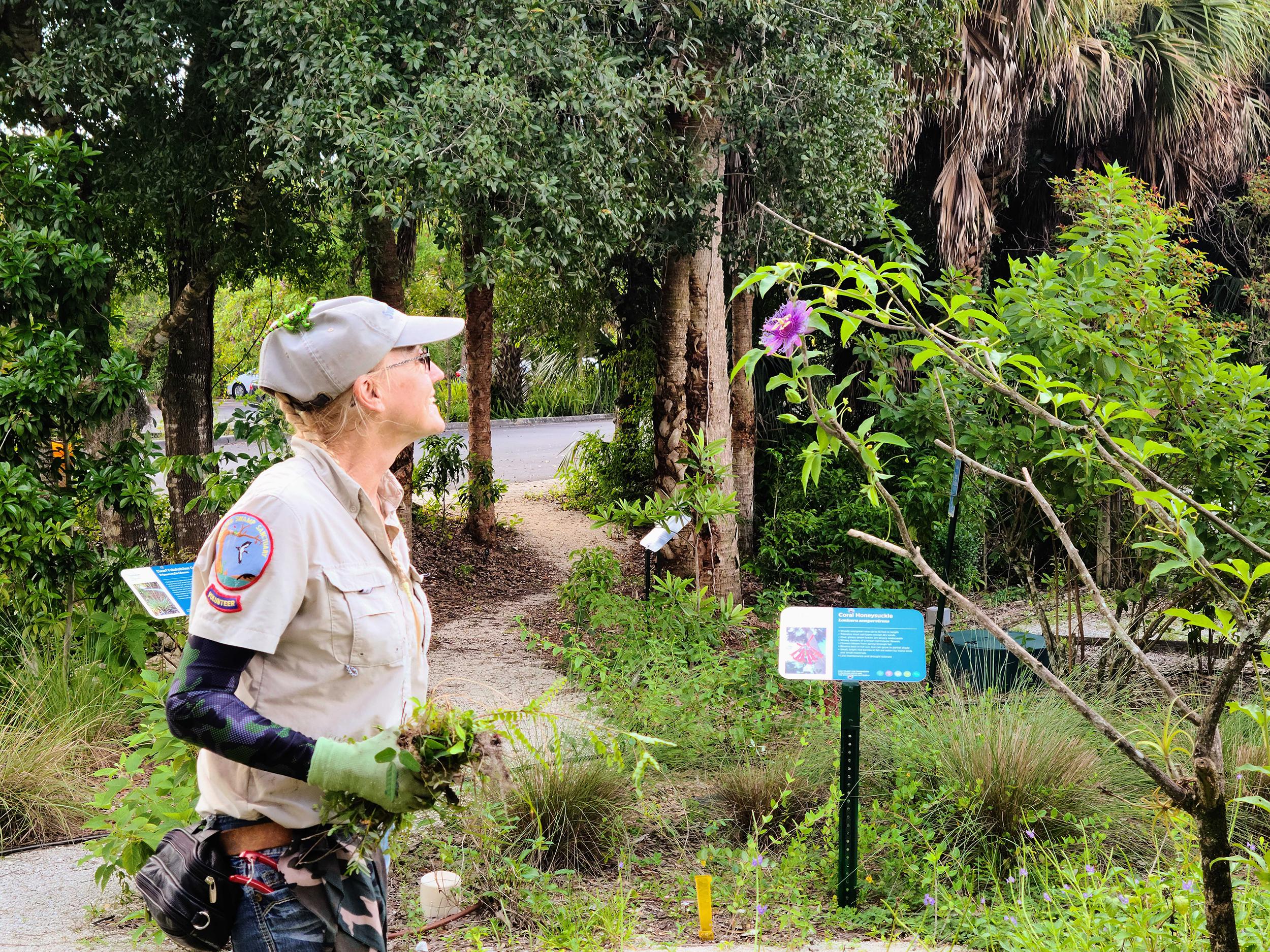 Volunteer at pollinator garden