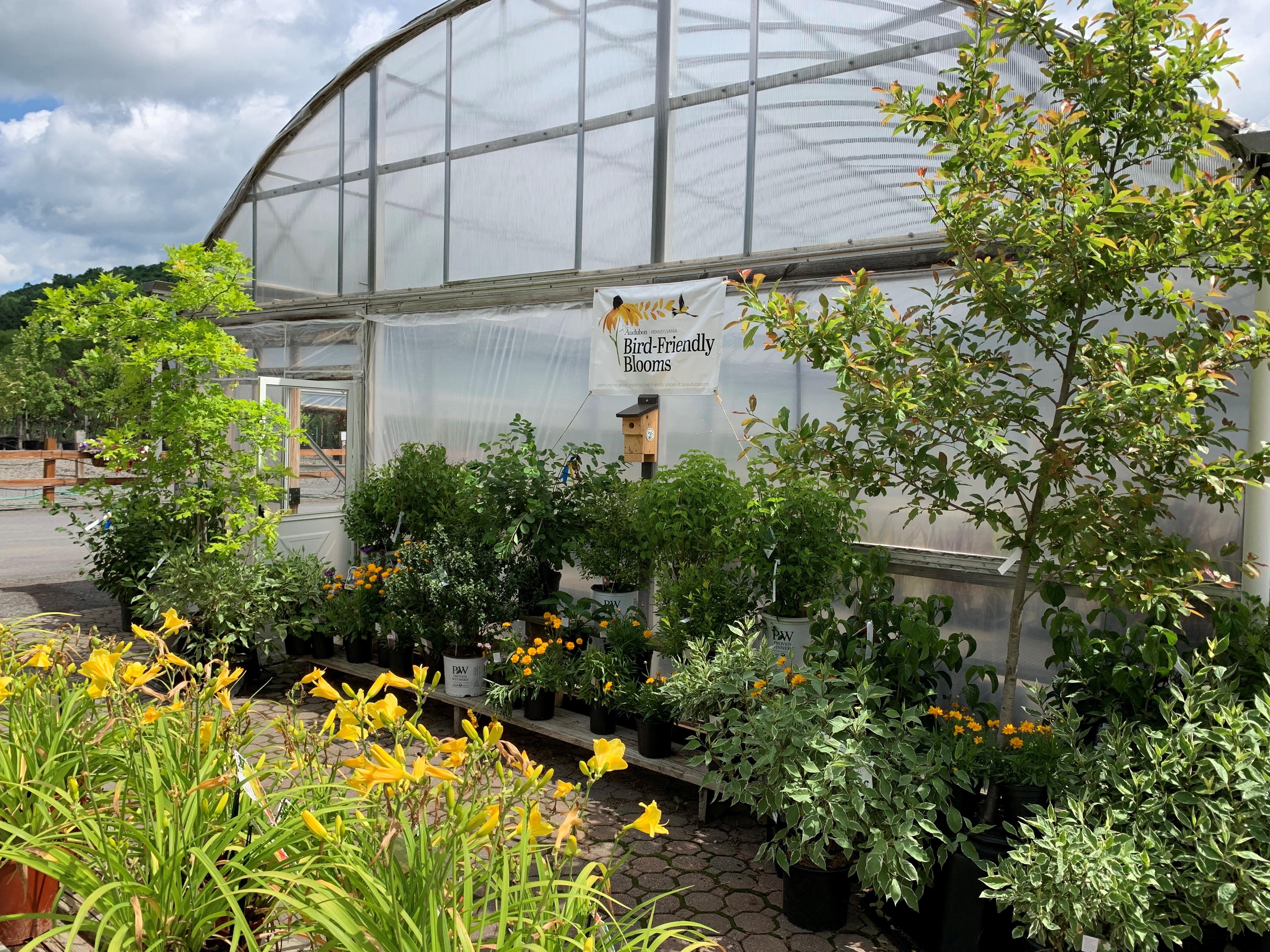 Bird-Friendly Blooms Partner, Ettinger's Landscaping & Garden Center