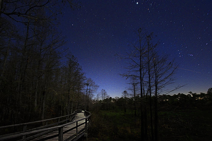 Corkscrew Sanctuary at night