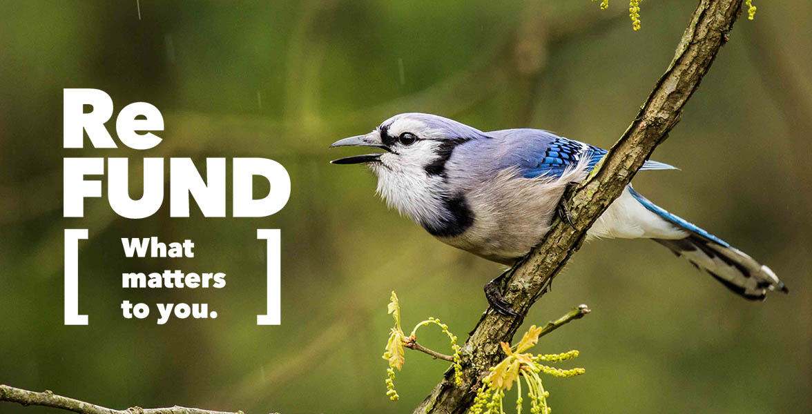 A Blue Jay and the ReFUND logo.