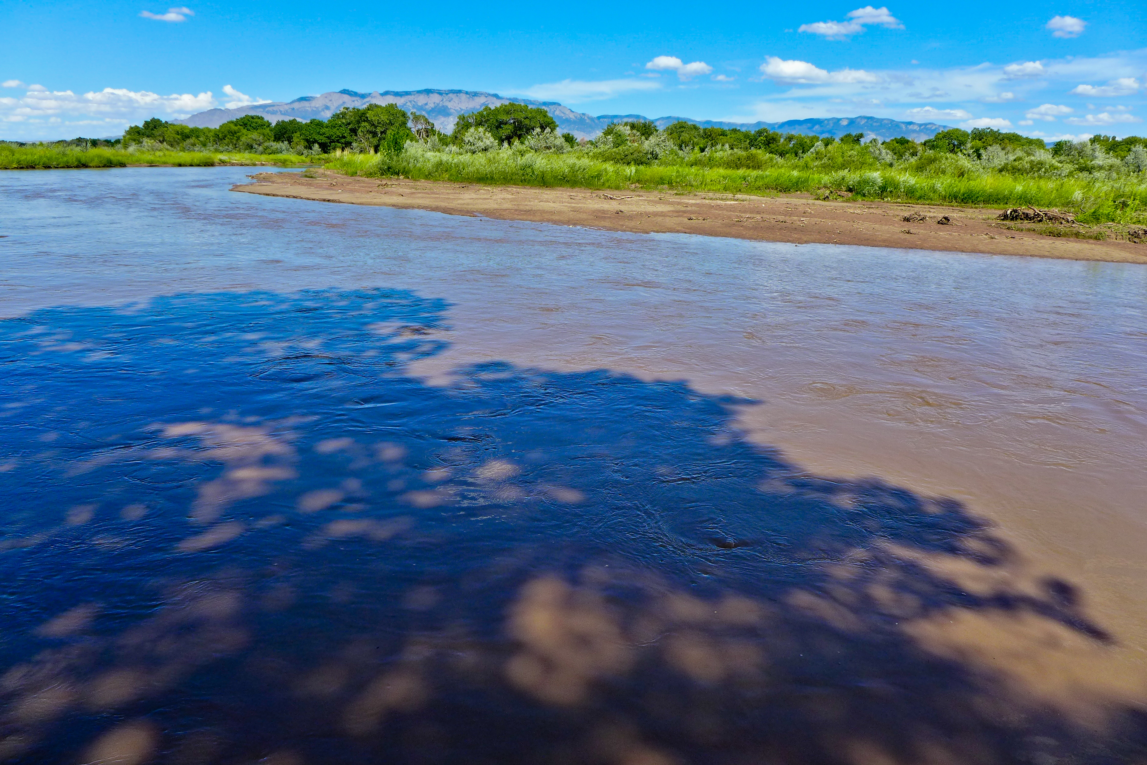 The Rio Grande in Albuquerque