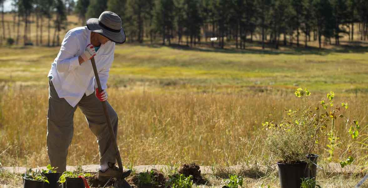 A volunteer digs holes for the Habitat Hero garden at Kiowa Creek Ranch. Photo: Parker Seibold