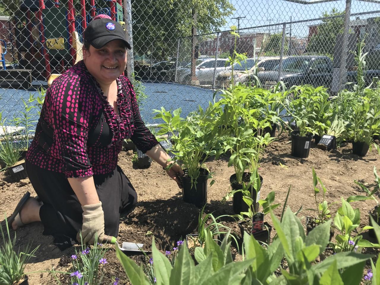 Patterson Park community plantings