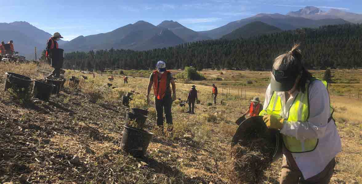 River restoration volunteers at Rocky Mountain National Park.