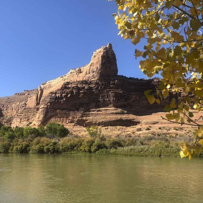 The Colorado River. Photo: Abby Burk